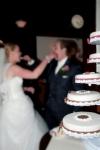 bruidstaart 3 februari Doornhof4 web.jpg