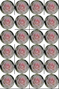 roos cupcake
